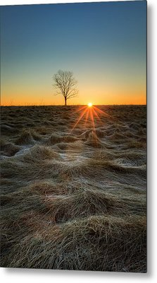 Daybreak Metal Print by Bill Wakeley