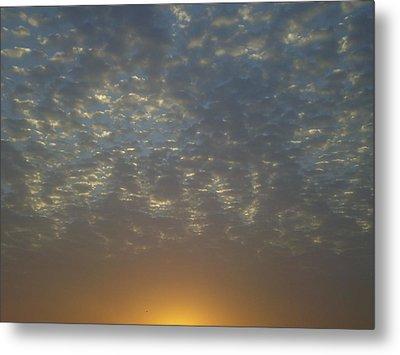 Daylight Awakening Metal Print by Heather Jack