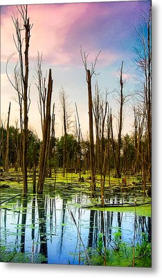 Daylight In The Swamp Metal Print