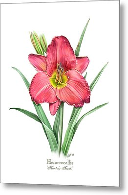 Daylily Hunters Torch Metal Print by Artellus Artworks