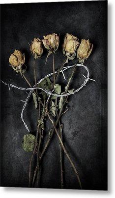 Dead Roses Metal Print by Joana Kruse