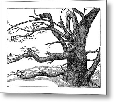 Metal Print featuring the drawing Dead Tree by Daniel Reed