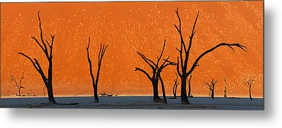 Dead Trees By Red Sand Dunes, Dead Metal Print