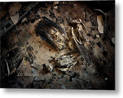 Metal Print featuring the photograph Deathly Hallows by Liz  Alderdice