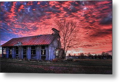 Metal Print featuring the photograph December At Bristol Park by Jaki Miller