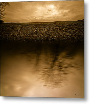December Sky Metal Print by Bob Orsillo