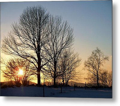 December Sundown Through The Trees Metal Print by Joy Nichols