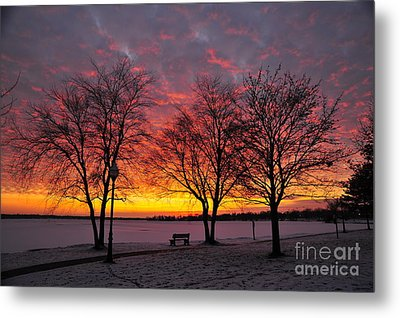 Metal Print featuring the photograph December Sunset by Terri Gostola