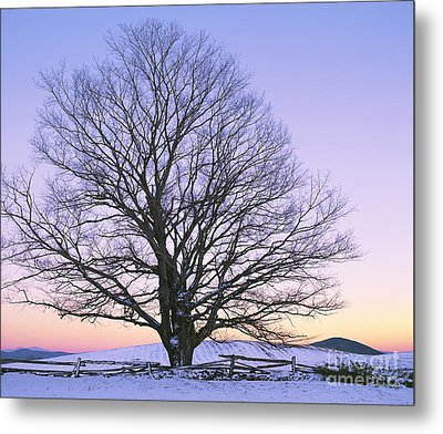 December Twilight Metal Print by Alan L Graham