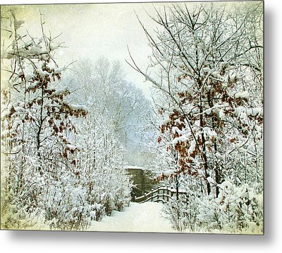 December's Path Metal Print by Jessica Jenney