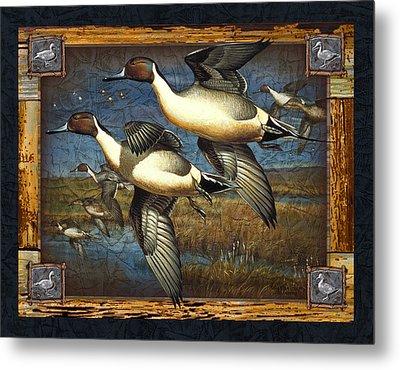 Deco Pintail Ducks Metal Print by JQ Licensing
