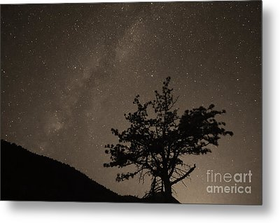 Deep Deep Deep Into The Night  Metal Print by James BO  Insogna
