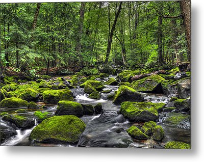Deep Green River Metal Print