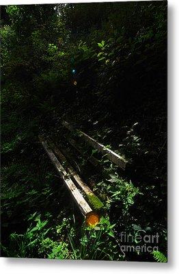 Deep In The Woods Metal Print by Andy Prendy