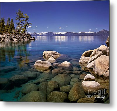 Deep Looks Metal Print by Vance Fox