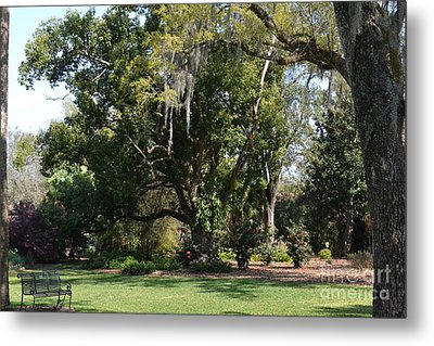 Metal Print featuring the photograph Deep South Scenery by Carol  Bradley