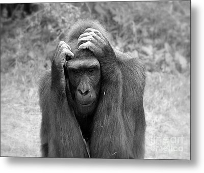 Deep Thoughts Metal Print