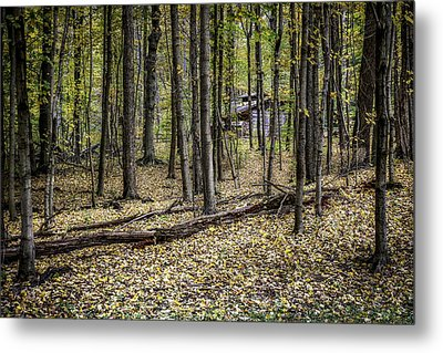 Deep Woods Cabin Metal Print by Tom Mc Nemar