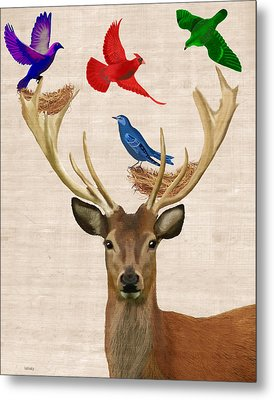 Deer And Birds Nests Metal Print by Kelly McLaughlan