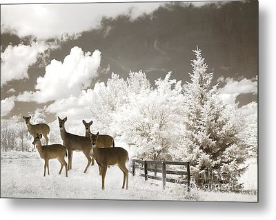 Deer Nature Winter - Surreal Nature Deer Winter Snow Landscape Metal Print