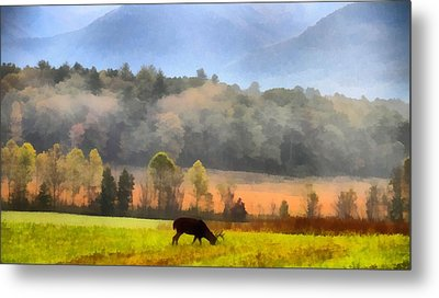 Deer In Cades Cove Smoky Mountains National Park Metal Print