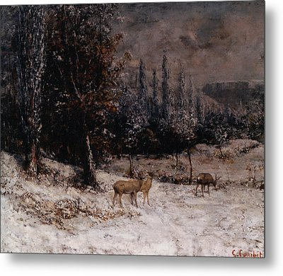 Deer In The Snow Metal Print by Gustave  Courbet
