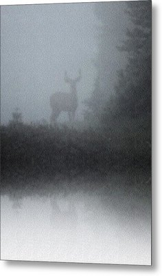 Metal Print featuring the photograph Deer Reflecting by Diane Alexander