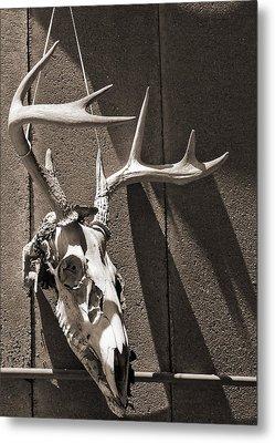 Deer Skull In Sepia Metal Print by Brooke T Ryan