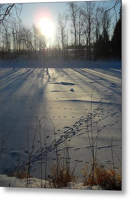 Deer Tracks On The River Metal Print