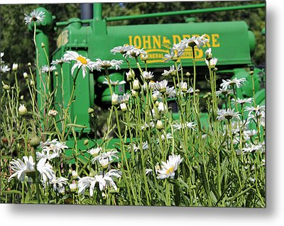 Deere 1 Metal Print by Lynn Sprowl
