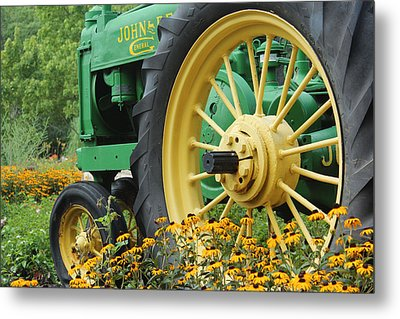 Deere 2 Metal Print by Lynn Sprowl