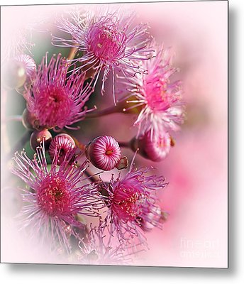 Delicate Buds And Blossoms Metal Print by Kaye Menner