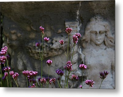 Delicate Pinks Metal Print by Yvonne Wright