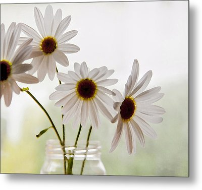 Metal Print featuring the photograph Delicate by Terri Harper