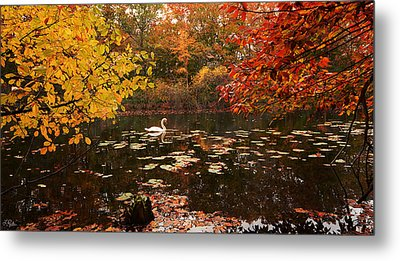 Delightful Autumn Metal Print