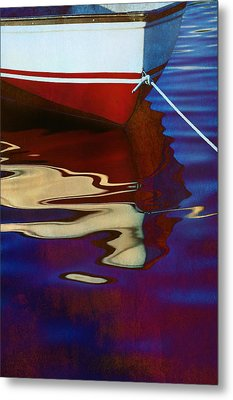 Delphin 2 Metal Print