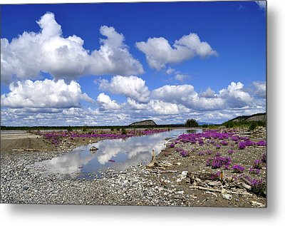 Metal Print featuring the photograph Delta Junction Summer by Cathy Mahnke