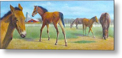 Delval Horse Farm In Spring Metal Print by Oz Freedgood