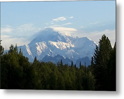 Denali A Closer Look Metal Print