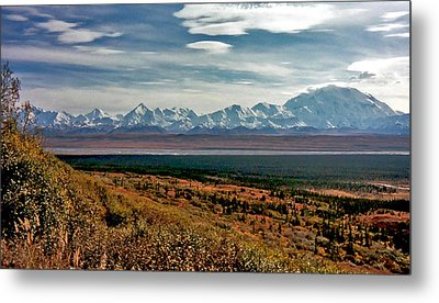 Metal Print featuring the photograph Denali Colors by Jeremy Rhoades