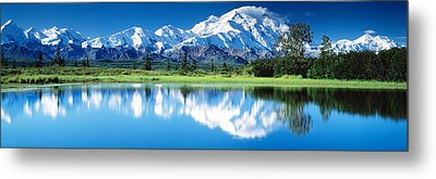 Denali National Park Ak Usa Metal Print by Panoramic Images