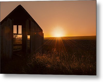 Derelict Shed Metal Print by Svetlana Sewell