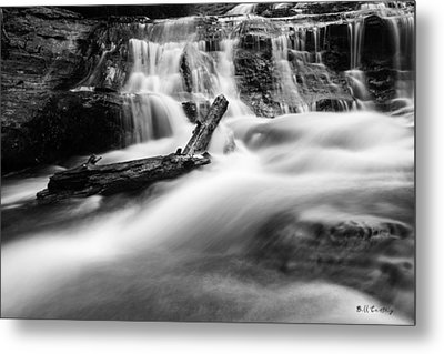 Descent Metal Print by Bill Cantey