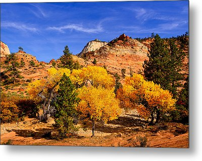 Desert Autumn Metal Print by Greg Norrell