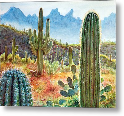 Desert Beauty Metal Print by Frank Robert Dixon