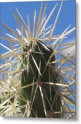 Desert Cactus Metal Print by Jewels Blake Hamrick