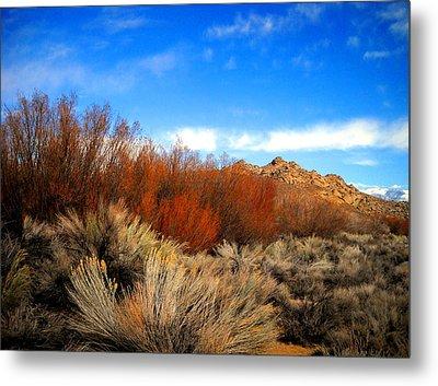 Desert Colors Metal Print by Marilyn Diaz