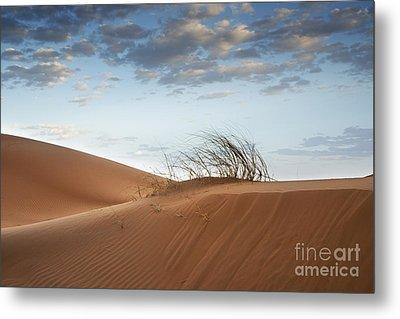 Desert Detail Metal Print by Yuri Santin