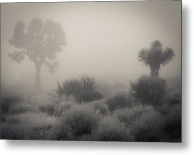 Desert Fog / No Watermark Metal Print