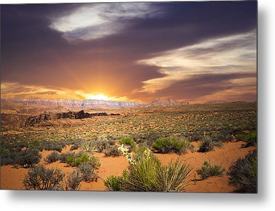 An Evening In The Desert Metal Print by Aged Pixel